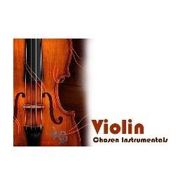 آلبوم بیکلام برگزیده آهنگ های ویولن نوازنده ها و آهنگسازان مشهور دنیا