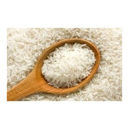 آموزش آفت و بیماریها و علفهای هرز برنج