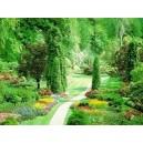 آموزش اصول باغبانی و گل کاری و طراحی فضای سبز