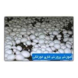 آموزش جامع پرورش قارچ خوراكي به زبان فارسي- 15ساعت آموزش