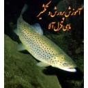 آموزش جامع تصويري پرورش ماهي قزل آلا به زبان فارسي
